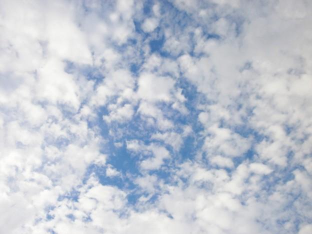 うろこ雲1