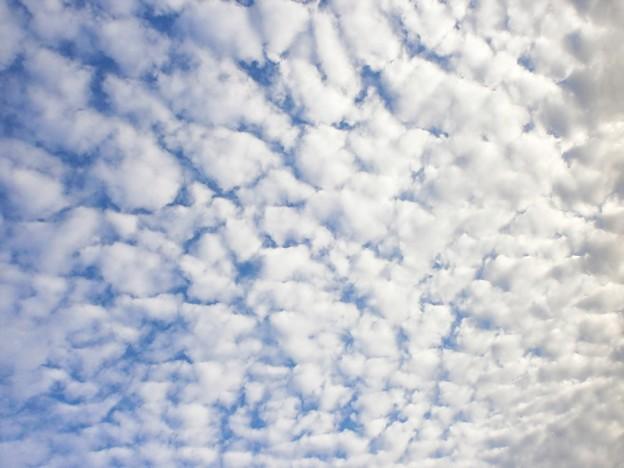 うろこ雲2