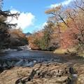 Photos: 湯川(竜頭滝上)