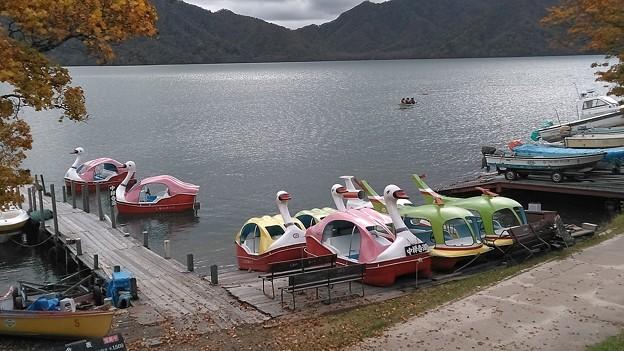 中禅寺湖のスワンボート