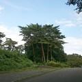 Photos: 公園にて