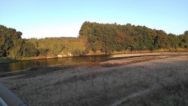 橋からの河原