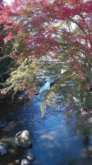 Photos: 紅葉と川