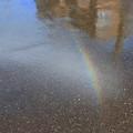 Photos: 虹が発生♪