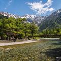 写真: お山の初夏