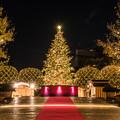 クリスマスの季節 (^-^;