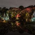 Photos: 紅葉夜景