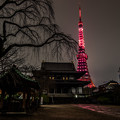 Photos: 東京タワー KANREKI RED ライトアップ