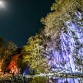 月夜と氷柱ライトアップ