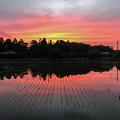 Photos: 田舎の夕焼け