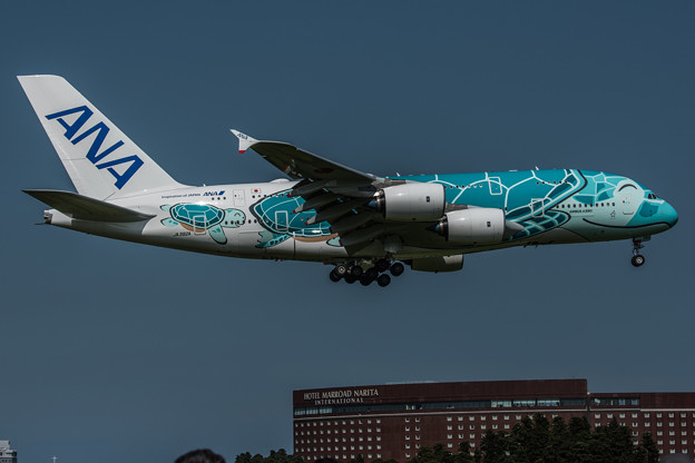 FLYING HONU 2号機