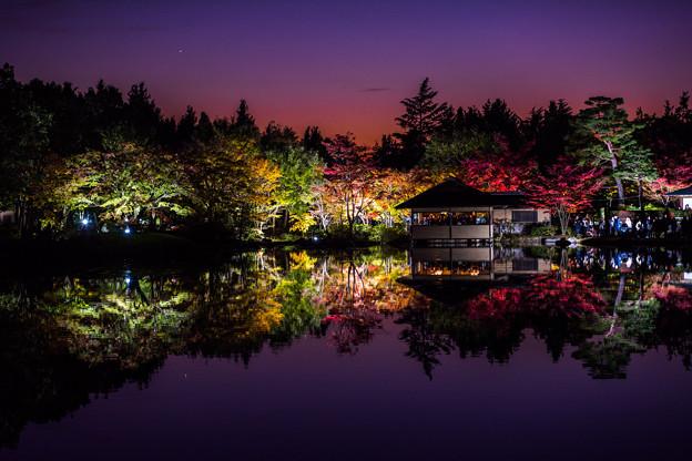 紅葉夜景 1