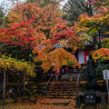 京の秋 2