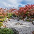 Photos: 京の秋 3