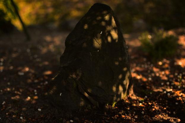 光当たる石