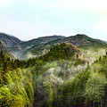 Photos: 山の景色