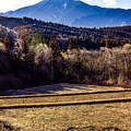 Photos: 山の風景