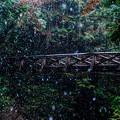 雪の中の橋