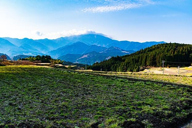 Photos: 里山