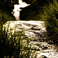 Photos: 光と川
