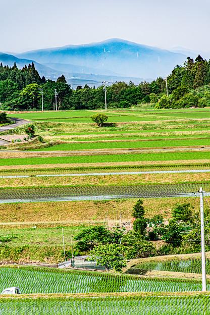Photos: 山と田んぼ