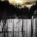 Photos: 朝の湖