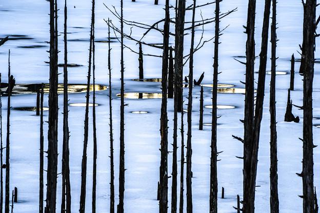 Photos: 凍った湖