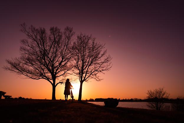 Photos: 沈む夕日を追いかけて