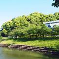 Photos: 新緑の額縁