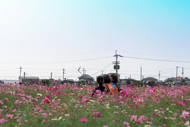 Photos: 今時の自撮り棒!
