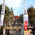 Photos: 初詣の道