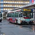 雨露に濡れる関東バス