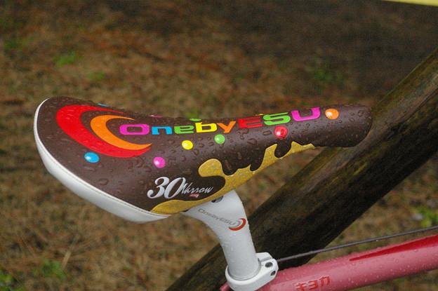 写真: チョコレートサドル