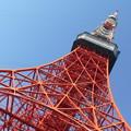 写真: Tokyo tower