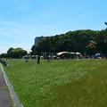 写真: Sunday in the park