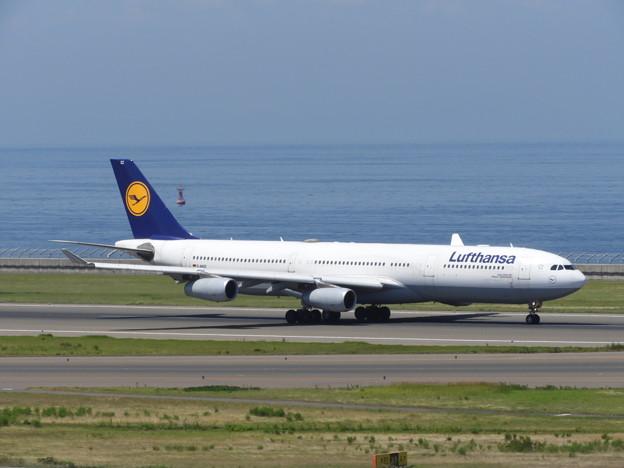 DLH A340-300