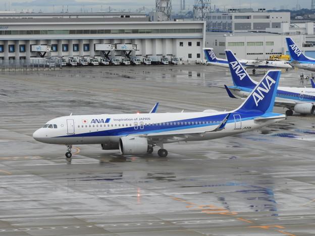 ANA A320neo