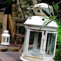Photos: ランプ再び