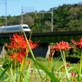 近鉄特急大阪線