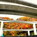 写真: 高速道