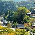 写真: 奈良長谷寺遠景