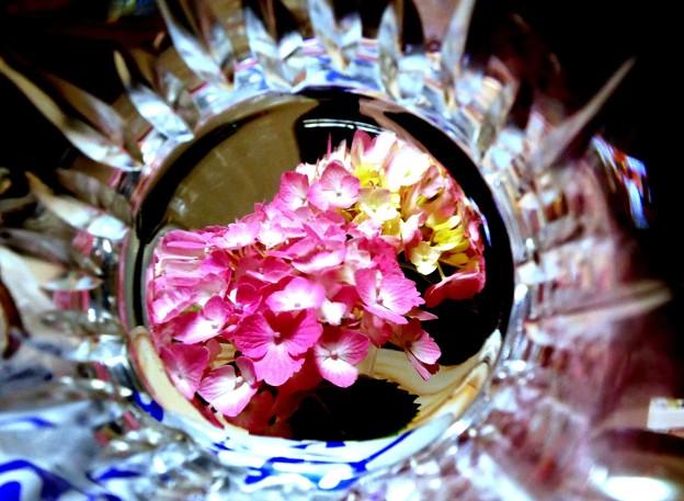 グラスの中で咲く