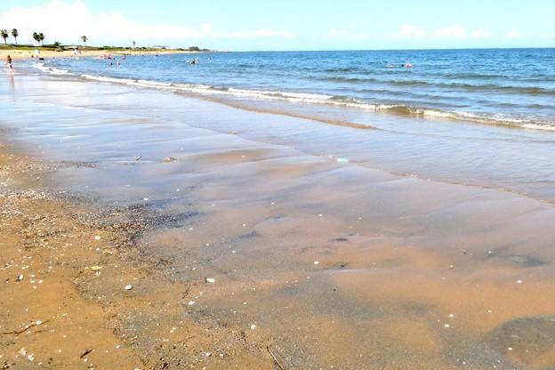 Photos: 潮が引く浜