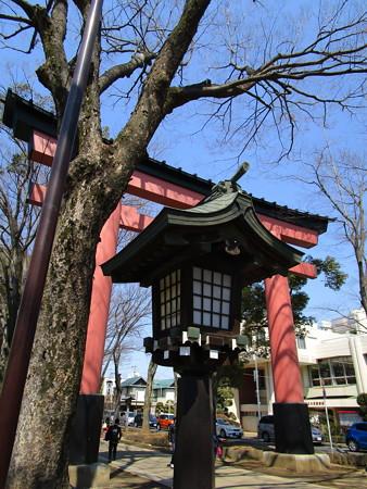 氷川神社二の鳥居