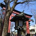 写真: 氷川神社二の鳥居