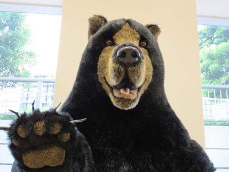 熊さんに出会った・2