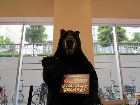 熊さんに出会った・4