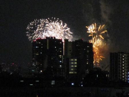 戸田橋花火大会1