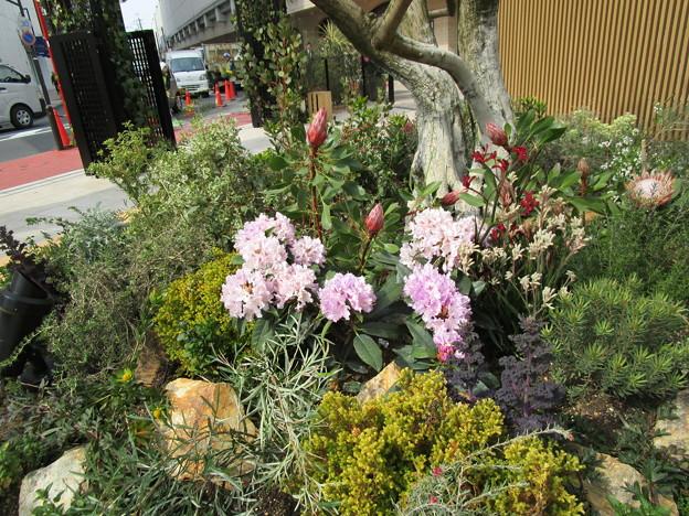 お花のあるベンチ