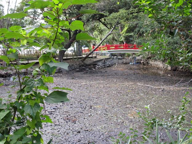赤い橋の下に水はなし